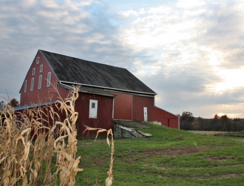 Press Release: Butler Township Farm Purchased with Low-Interest Loan through Alliance