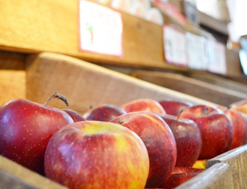 Press Release: Adams County's Food Manufacturing Industry Tastes Success